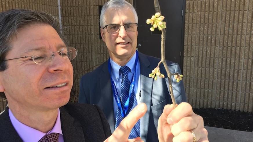 Drs Dvorin and Goldstein with Seaonsal Allergies on Metro Philadelphia